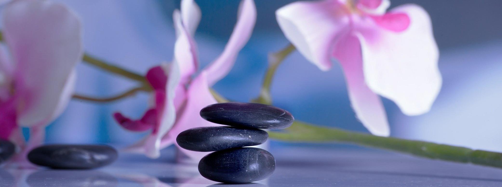 Paths To Wellness